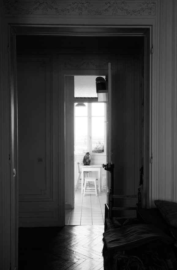 margot-appartement-parisien-décoration-inspiration-22.jpg