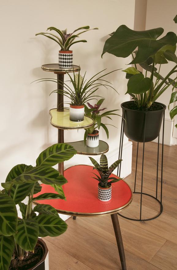 fanny-moizant-appartement-parisien-décoration-inspiration-12.jpg