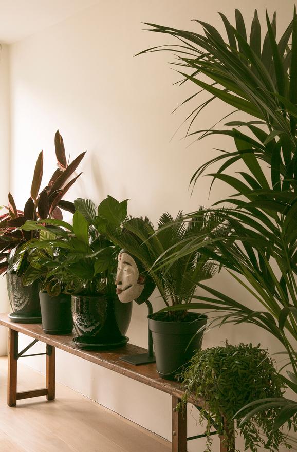 fanny-moizant-appartement-parisien-décoration-inspiration-9.jpg