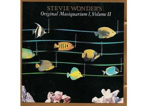 charlotte-musique-stevie-wonder-musiquarium-5.jpg